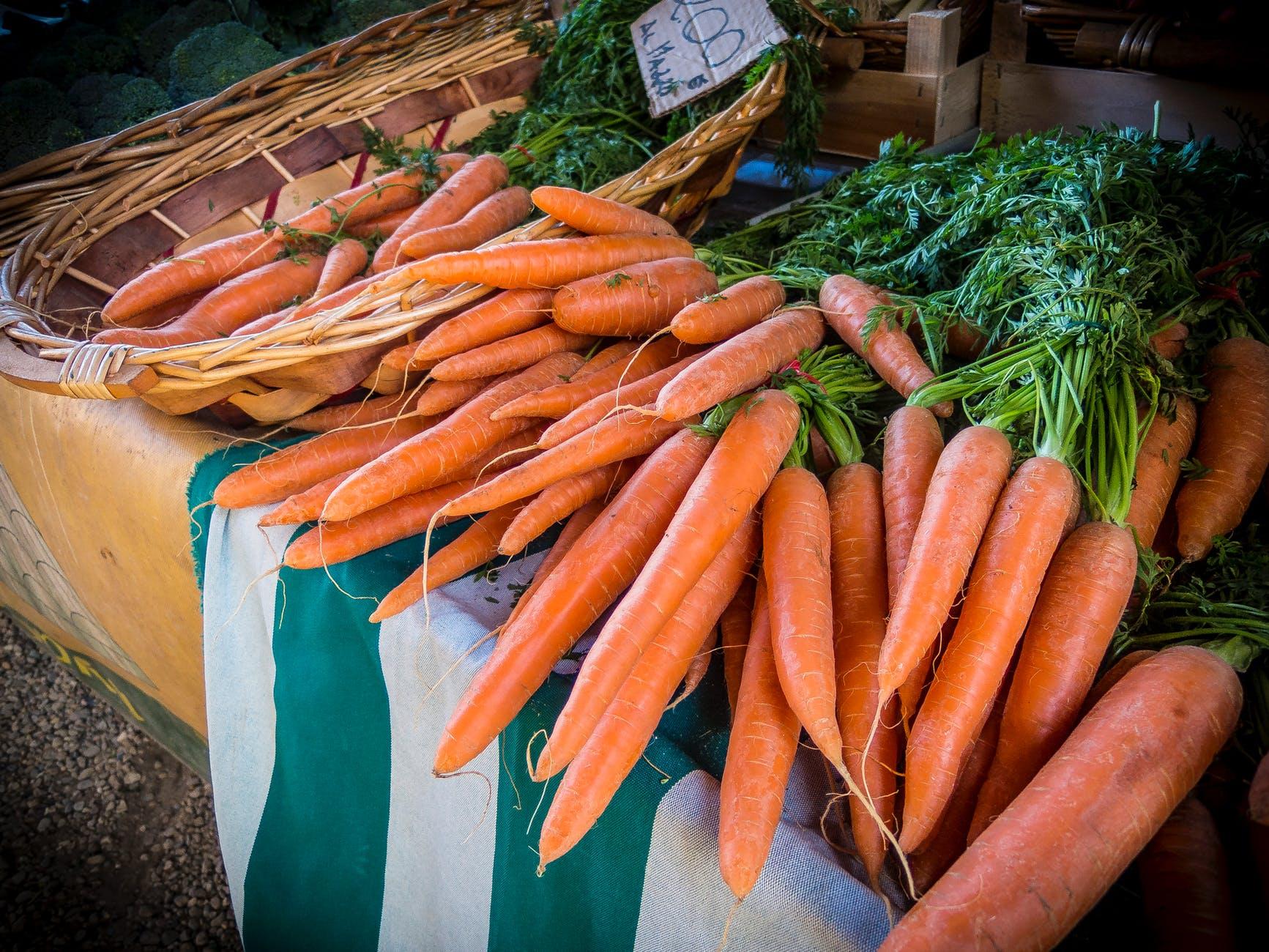 food orange carrot macro
